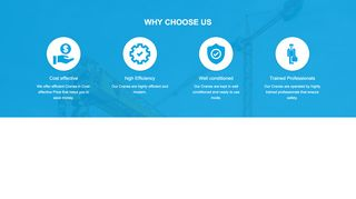 Professional Why Choose us section